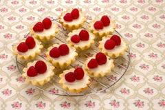 Domowej roboty mali torty z świeżymi malinkami na pielusze z f Obrazy Royalty Free