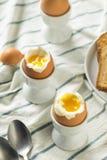 Domowej roboty miękkiej części Gotowany jajko w filiżance Fotografia Royalty Free