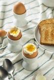 Domowej roboty miękkiej części Gotowany jajko w filiżance Zdjęcie Stock