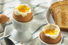 Domowej roboty miękkiej części Gotowany jajko w filiżance Fotografia Stock