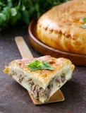 Domowej roboty mięsny kulebiak z grulami Zdjęcia Stock