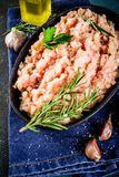 Domowej roboty minced kurczaka mięso obraz royalty free
