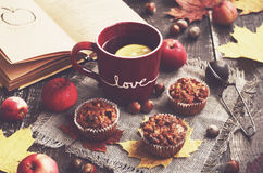 Domowej roboty oatmeal muffins z dokrętkami i jabłkami obraz royalty free