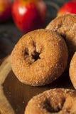 Domowej roboty Osłodzeni Jabłczanego cydru Donuts Obraz Stock