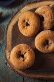 Domowej roboty Osłodzeni Jabłczanego cydru Donuts Zdjęcie Stock