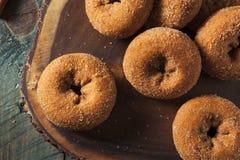 Domowej roboty Osłodzeni Jabłczanego cydru Donuts Fotografia Stock