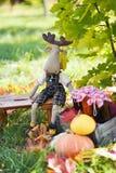 Domowej roboty owocowy dżem w słoju Obrazy Stock