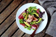 Domowej roboty piec na grillu tuńczyk sałatka, odgórny widok Zdjęcie Royalty Free