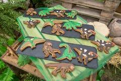 Domowej roboty piernikowi ciastka z handmade lodowacenie dekoracj? jako ?mieszni dinosaury powierzchnia drewnianego fotografia stock