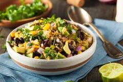 Domowej roboty Południowo-zachodni Meksykańska Quinoa sałatka zdjęcie royalty free