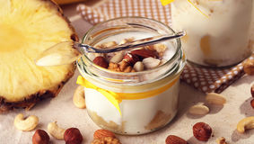 Domowej roboty przeciwutleniacza lata owoc Jogurt od naturalnego mleka Th Zdjęcie Stock
