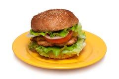 Domowej roboty rybi hamburger Zdjęcia Royalty Free