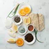 Domowej roboty skóry opieka, ciało maska z naturalnym składnika aloesem Vera i pętaczki i, cytryna, kawa, pomarańcze, glina, obrazy stock
