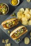 Domowej roboty Slaw hot dog Zdjęcie Royalty Free