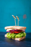 Domowej roboty smakowita jarska kanapka z świeżymi warzywami i serem Zdjęcie Royalty Free