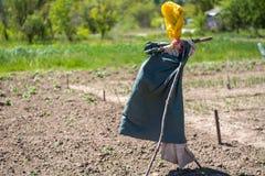 Domowej roboty strach na wróble w ogródzie Ogrodowy atrybut obraz royalty free