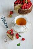 Domowej roboty tort z jagody zdjęcia royalty free