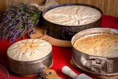 Domowej roboty torty, biskwitowy pieczenie Fotografia Stock