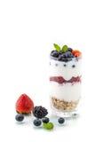 Domowej roboty zdrowy śniadanie z jogurtem, jagodą i oatmeal, fotografia royalty free