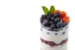 Domowej roboty zdrowy śniadanie z jogurtem, jagodą i oatmeal, zdjęcie royalty free