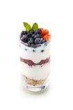 Domowej roboty zdrowy śniadanie z jogurtem, jagodą i oatmeal, dieti zdjęcia royalty free