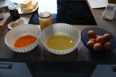 Domowi jajka i jajeczny biel yolks i jajecznego Zdjęcia Royalty Free