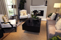 domowy żywy luksusowy pokój Zdjęcia Stock