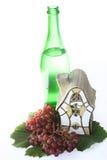domowy butelka winograd Zdjęcia Stock