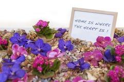 Domowy cukierki dom Fotografia Royalty Free
