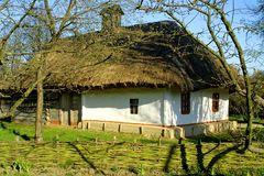 domowy dach pokrywać strzechą typowego Fotografia Stock