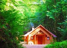 domowy drewniany Zdjęcia Stock