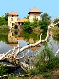 domowy jezioro Obraz Stock