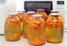 Domowy konserwować: wielkie szklane butle z morelowym kompotem Fotografia Royalty Free