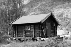 domowy norweg Fotografia Stock