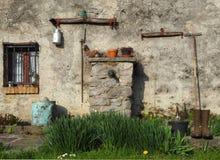 Domowy ogród w wczesnej wiośnie Zdjęcia Stock