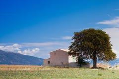 Domowy pobliski drzewo w górach fotografia royalty free