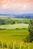 Domowy pobliski winnica w Tuscany krajobrazie, Włochy obraz stock