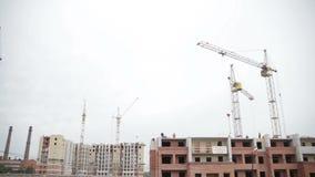 Domowy w budowie, mnóstwo żurawie zdjęcie wideo
