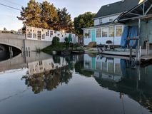 Domowych kanałowych lis zatoczki Detroit drzwi artsy śliczny zdjęcie stock