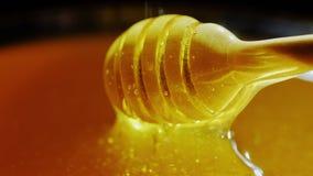 Dompel een houten lepel in honing onder stock video