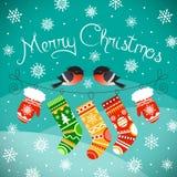 Dompfaffe auf der Linie mit Weihnachtshandschuhen und -socken Lizenzfreies Stockbild