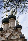 Doms de vieille église Images libres de droits