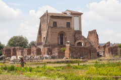 Domus Flavia Stock Images