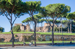 Domus Severiana Royalty Free Stock Images