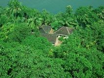 domy dżungli Obraz Stock