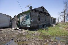 domy dziewiąty oddziału Zdjęcie Royalty Free