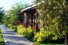 Domy otaczają tropikalnymi roślinami i kwiatami Obraz Royalty Free
