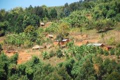 Domy rozpraszali na górze Kilolo, Tanzania, Afryka Zdjęcie Royalty Free