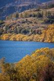 Domy wokoło kolorowego jeziora Fotografia Stock
