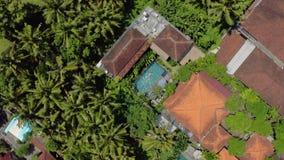 Domy z kolorowymi gontów dachami i basen z pływacką kobietą między drzewkami palmowymi zbiory wideo